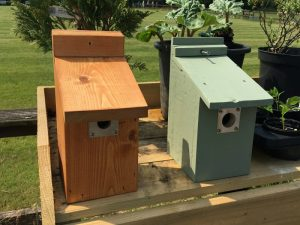 Mens shed bird boxes