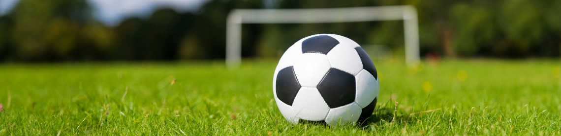 soccer ball on grass banner